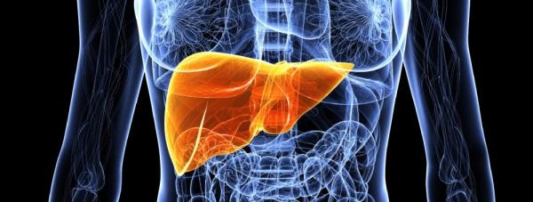 Wirusy kontra wątroba – jak walczyć z zapaleniem wątroby?