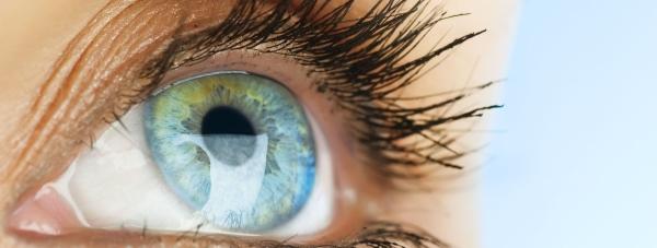 Metamorfoza w mgnieniu oka