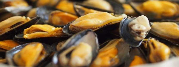 Chcesz urządzić eleganckie przyjęcie? Podaj potrawy ze świeżych owoców morza!