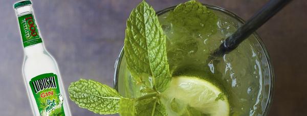Lubuski Gin & Mint nowy cool drink Lubuski