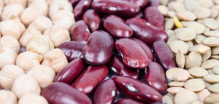 Rośliny strączkowe – dlaczego warto je jeść