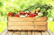 Dieta wegetariańska - co warto z niej zapożyczyć?
