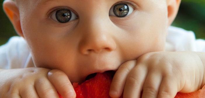 Mojedziecko nie chce jeść!Czyli brak apetytu u najmłodszych i jak sobie z nim radzić