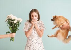 Alergeny – to one Cię uczulają. Sprawdź, jak się przed nimi bronić